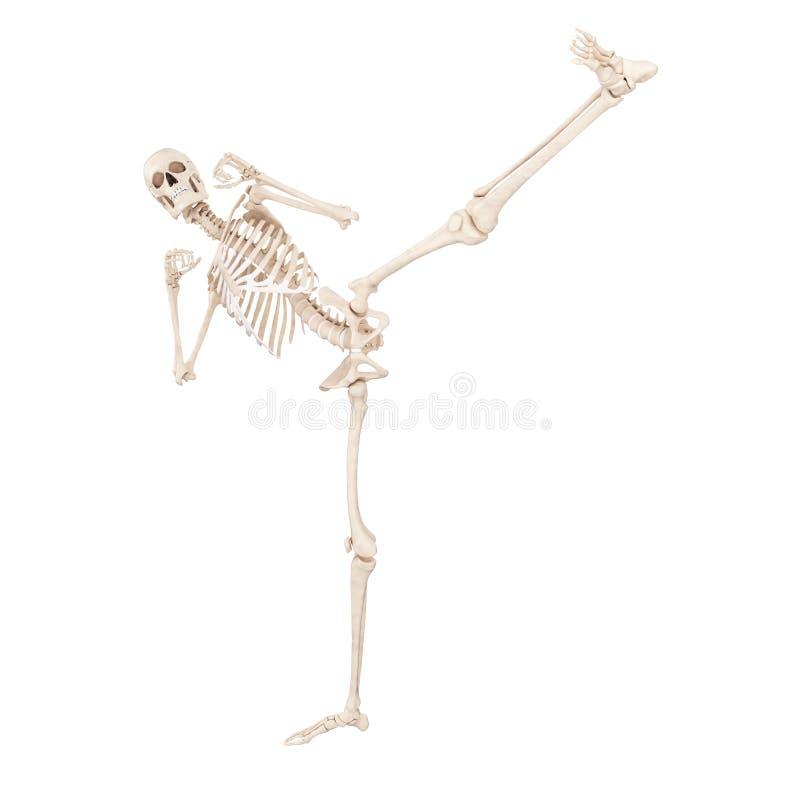 пинать скелета иллюстрация вектора