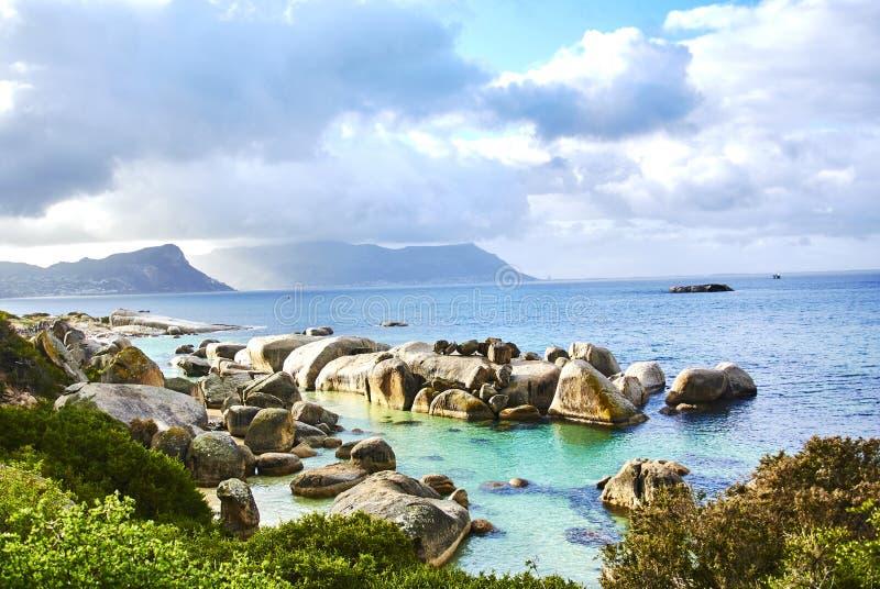 Пингвины в boulder& x27; пляж Кейптаун Южная Африка s с взморьем стоковое фото