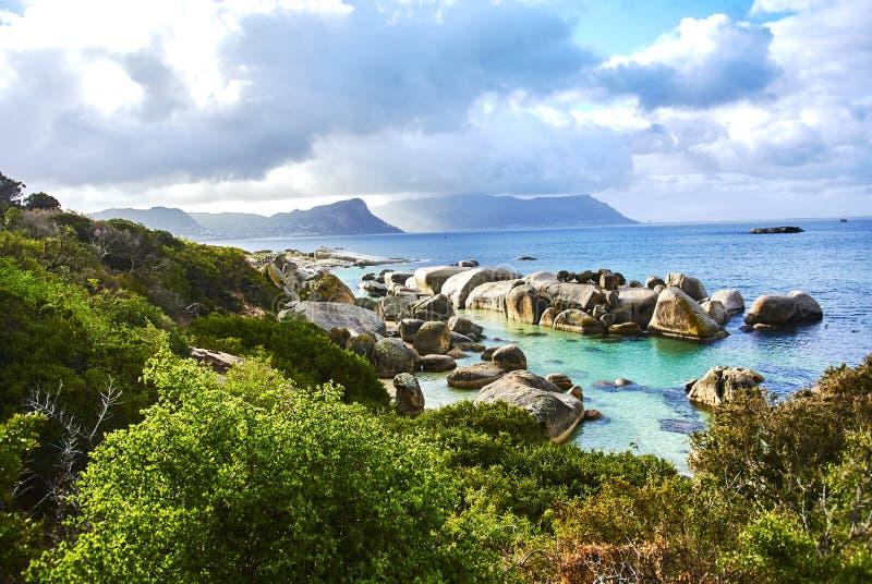 Пингвины в boulder& x27; пляж Кейптаун Южная Африка s с взморьем стоковое изображение