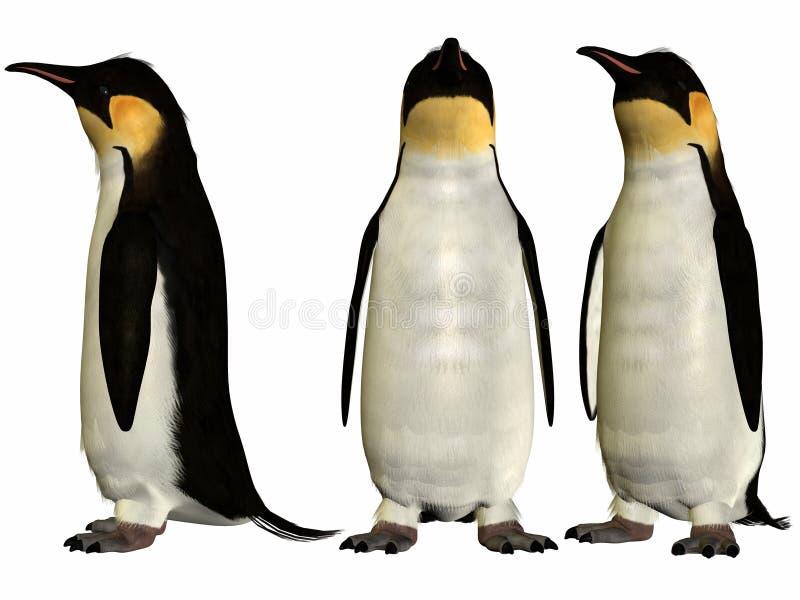 пингвин императора иллюстрация штока