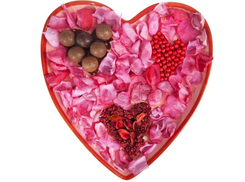 пинка лепестков сердца Валентайн большого розовое стоковая фотография