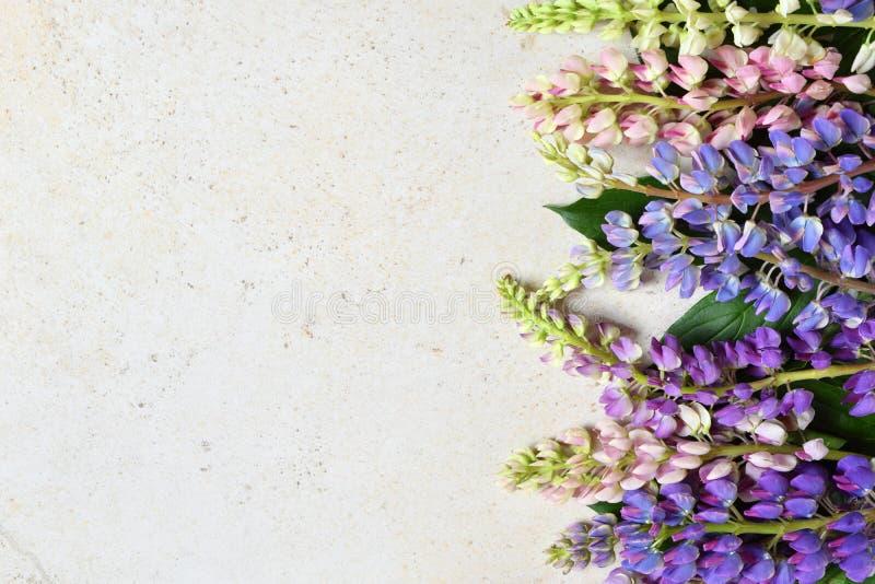 Пинк и пурпурные lupine цветки на мраморной предпосылке День рождения, День матери, карта дня Валентайн, 8-ое марта, свадьбы или  стоковые изображения