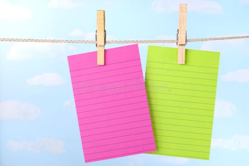 пинк примечаний clothesline зеленый стоковая фотография