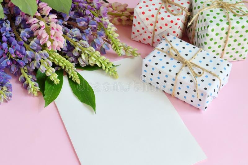 Пинк, пурпурные lupine цветки, подарки и пустой бумажный лист на розовой предпосылке День рождения, День матери, день Валентайн,  стоковое изображение rf