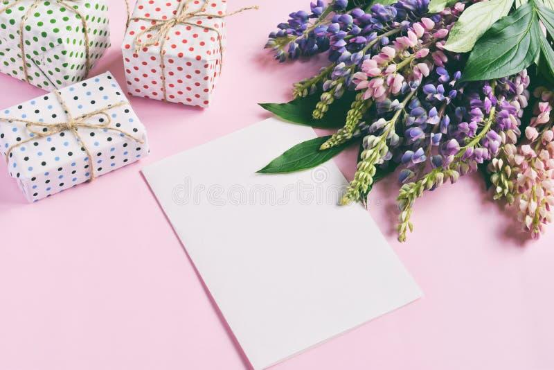 Пинк, пурпурные lupine цветки, подарки и пустой бумажный лист на розовой предпосылке День рождения, День матери, день Валентайн,  стоковые изображения
