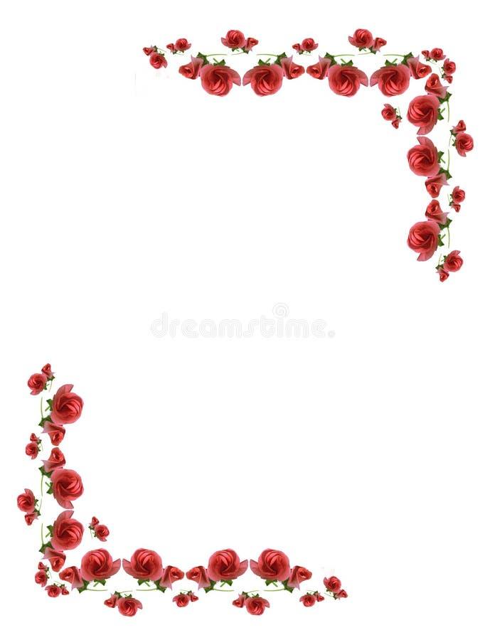 пинк рамок цветков бутонов стоковое изображение rf