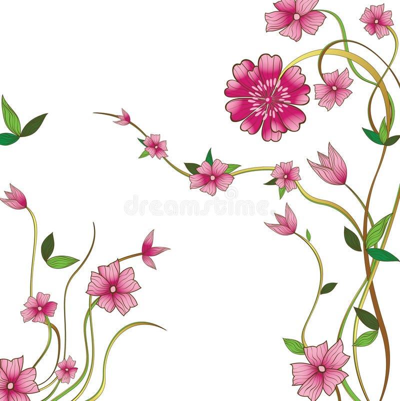 пинк цветков бесплатная иллюстрация