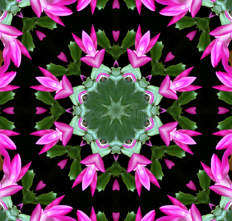 пинк kaleidoscope цветка стоковое фото rf