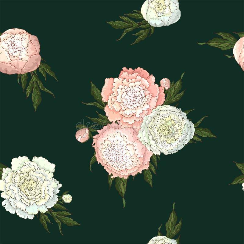 Пионы вектора Безшовная картина белого и светлого - розовые цветки Букеты цветков на темной ой-зелен предпосылке r иллюстрация штока