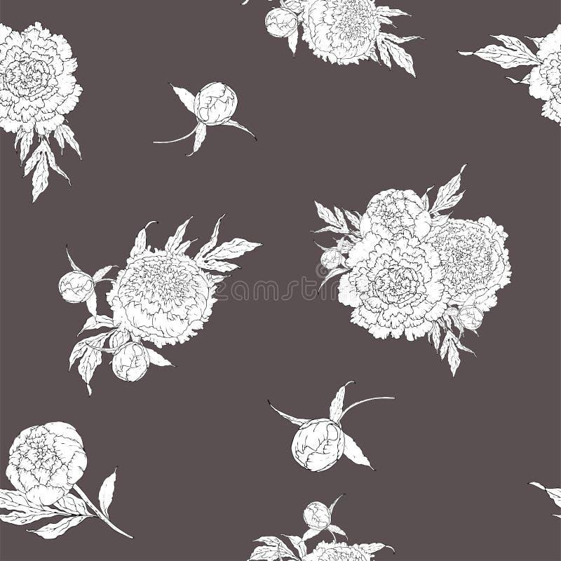 Пионы вектора Безшовная картина monochrome белых цветков Букеты цветков на серой предпосылке Шаблон для флористического бесплатная иллюстрация