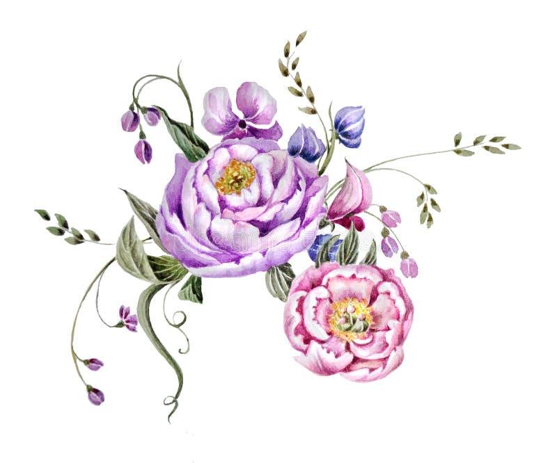 Пионы и травы цветков иллюстрация вектора
