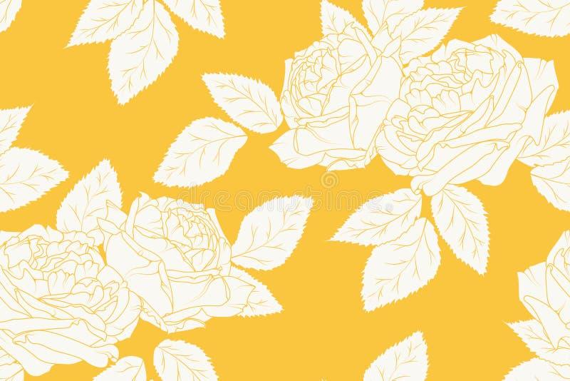 Пионы подняли линия картина чертежа эскиза флористическая безшовная Белый на яркой желтой оранжевой предпосылке вектор иллюстраци бесплатная иллюстрация