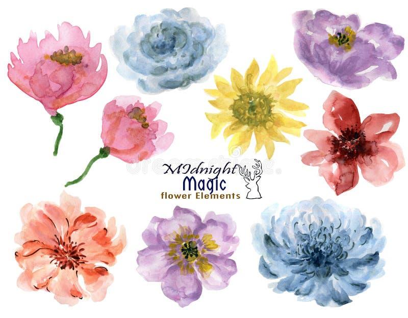 Пион цветка акварели поднял лилия и дизайн цвета маленького пинка син бесплатная иллюстрация