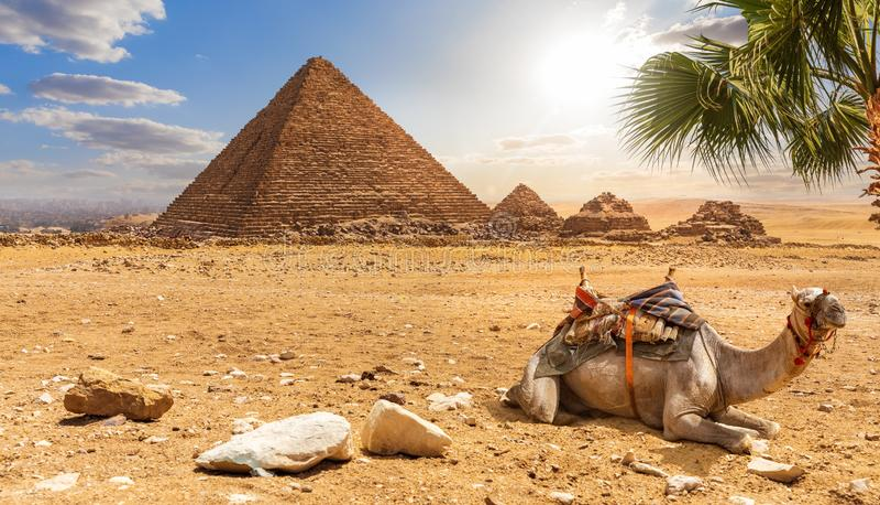 Пирамида Менкауре и верблюжий, красивый пейзаж пустыни, Египет стоковая фотография rf
