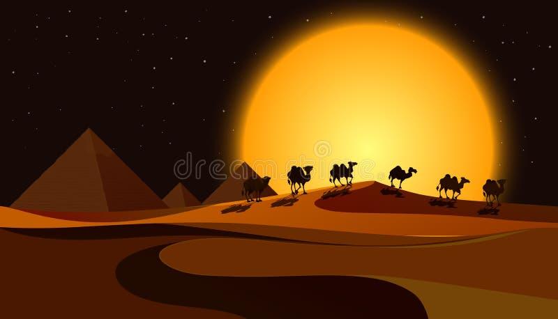 Пирамиды на сцене ночи бесплатная иллюстрация