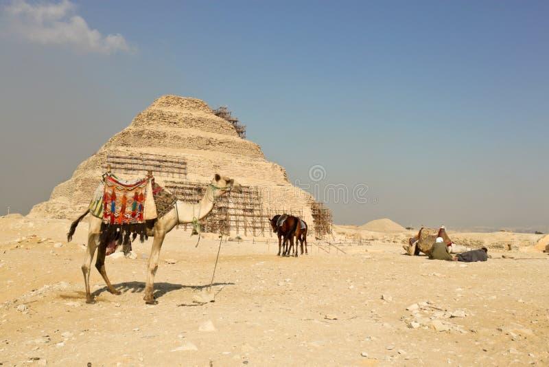 Download Пирамида шага Djoser в Саккаре, Египте Стоковое Фото - изображение насчитывающей лошадь, пирамидка: 37926282