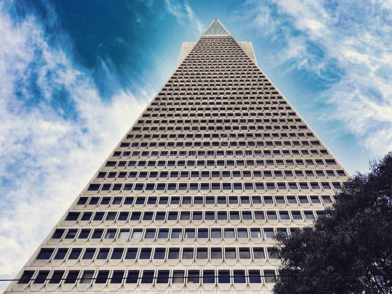 Пирамида TransAmerica достигая в небо стоковые фотографии rf