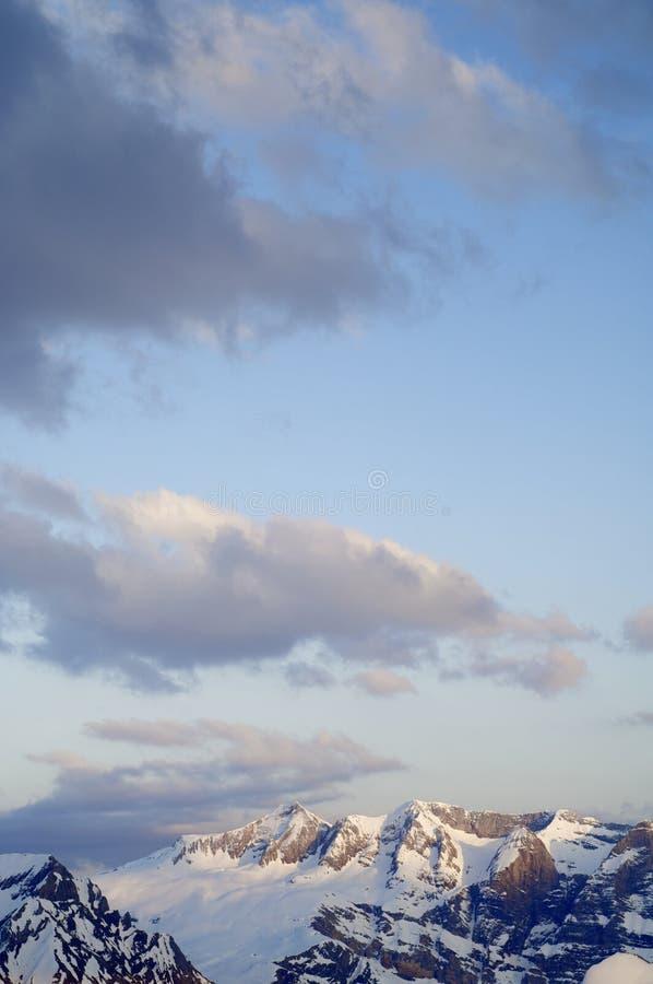 Download Пиренеи стоковое фото. изображение насчитывающей экосистема - 37928580