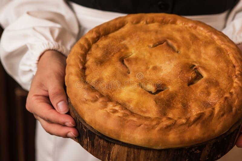 Пирог от сыра и овощей мяса картошки стоковое фото