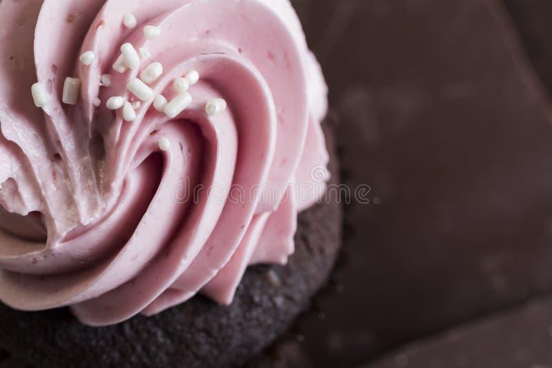 Пирожное поленики шоколада стоковое фото