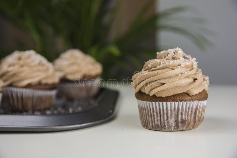Пирожное шоколада с кокосом стоковое фото