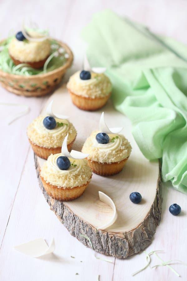 Пирожные с голубиками стоковые фото