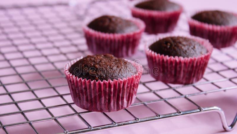Пирожные шоколада мини стоковая фотография rf