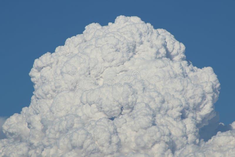 Пирокластические облака от короля Ели стоковая фотография