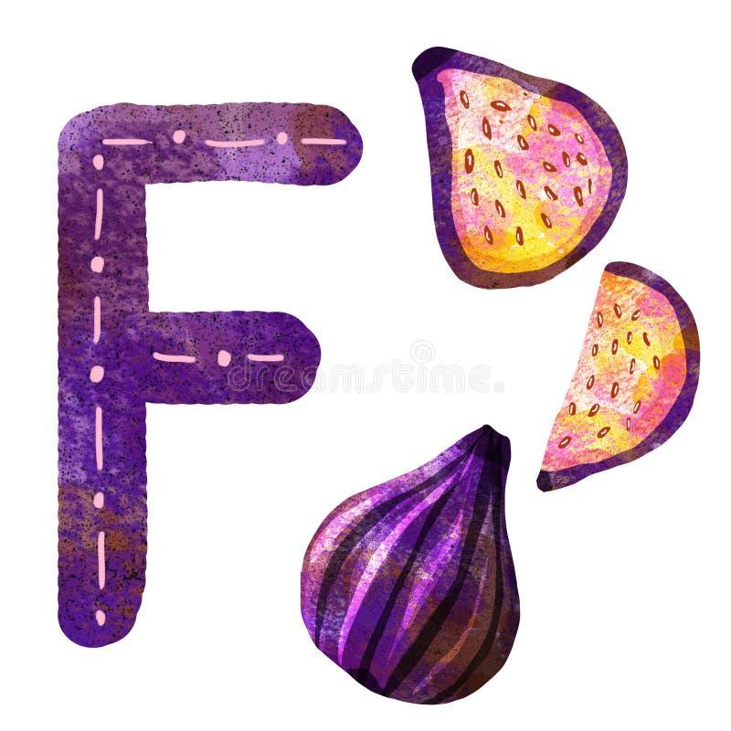 Письмо f английского алфавита иллюстрация вектора