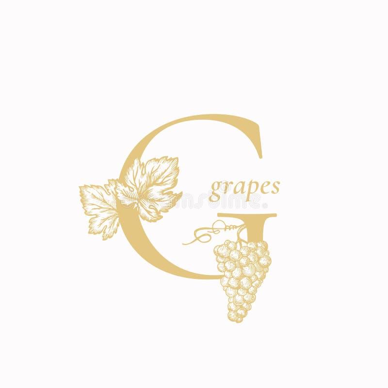 Письмо g виноградины Абстрактные знак вектора, символ или шаблон логотипа Нарисованные рукой ветвь и листья виноградины вокруг пи бесплатная иллюстрация