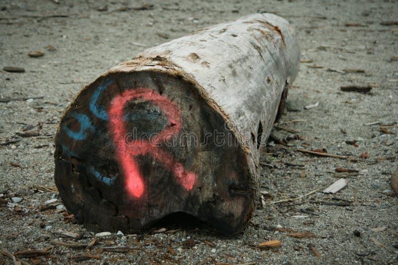 Письмо r на пляже logon стоковые изображения