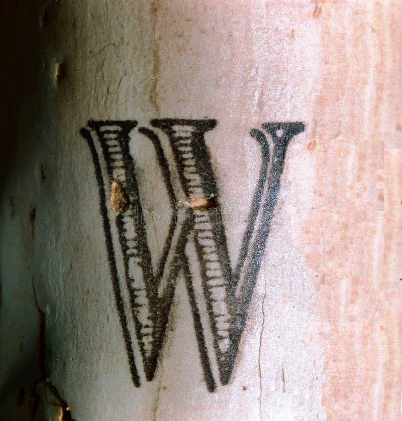письмо w