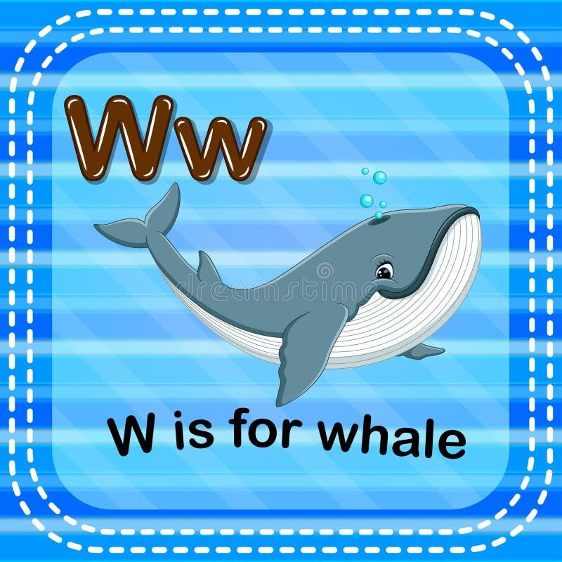 Письмо w Flashcard для кита бесплатная иллюстрация