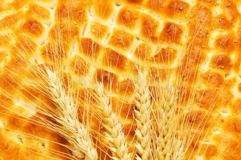 питание принципиальной схемы хлеба свежее стоковые изображения rf