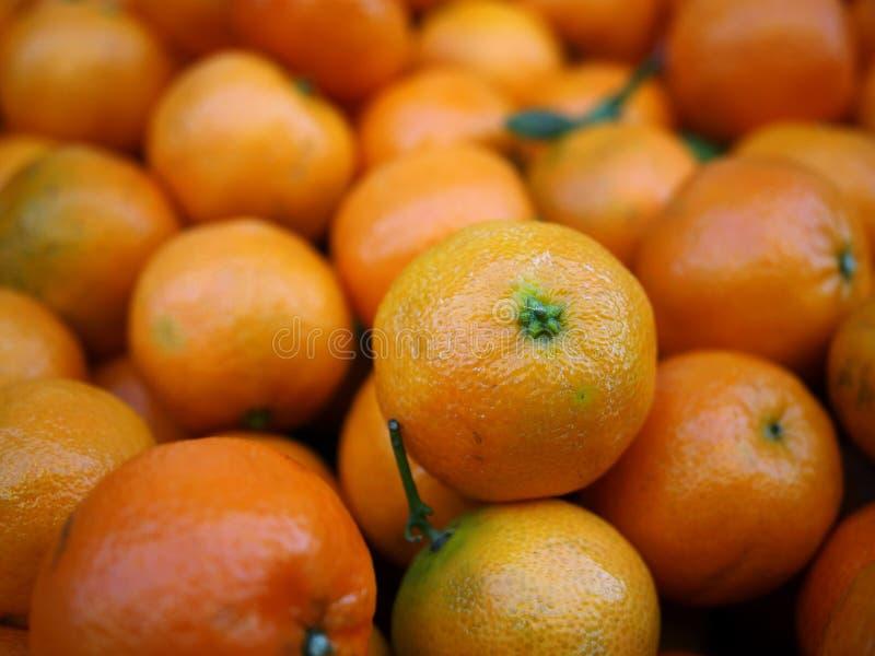 Питание tangerines стоковое фото rf