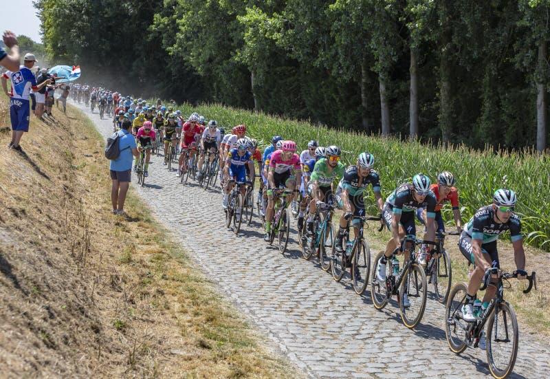 Питер Sagan в Peloton - Тур-де-Франс 2018 стоковые фото