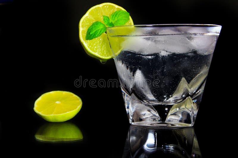 Download Питье джина с тоником стоковое изображение. изображение насчитывающей стекло - 40586961