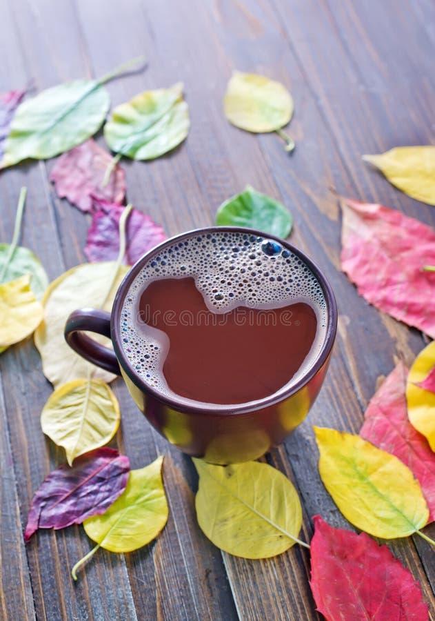 Питье какао стоковое фото rf