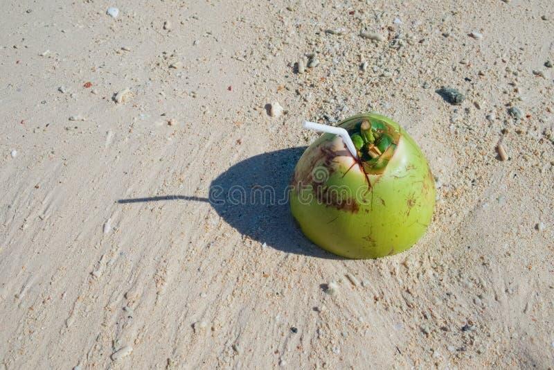 Питье кокоса на тропическом песчаном пляже стоковые фото