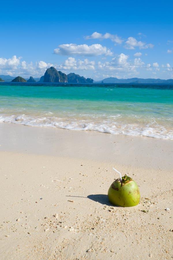 Питье кокоса на тропическом пляже стоковая фотография rf