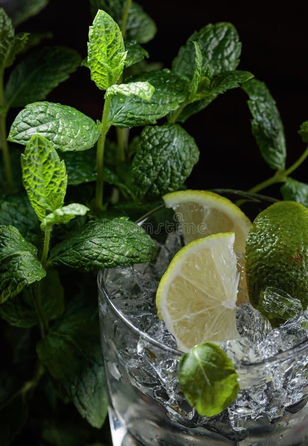 Питье коктеиля Mojito с известкой, льдом и мятой стоковая фотография rf