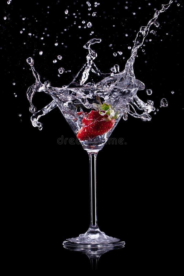 Питье Мартини стоковые изображения rf