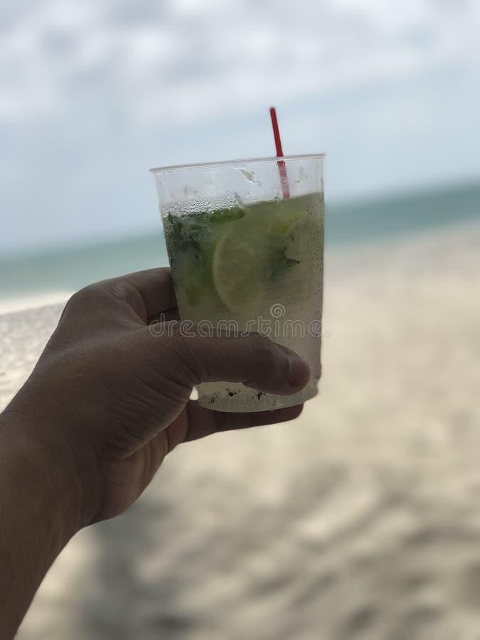 Питье на пляже стоковое фото