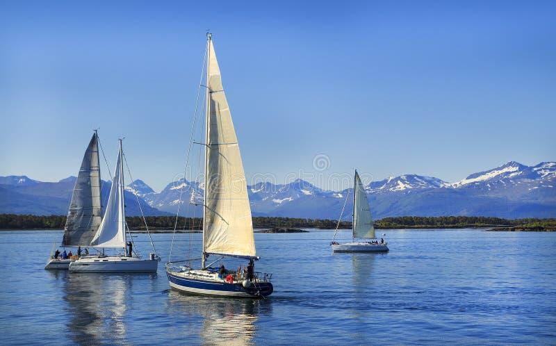 Плавание парусников, голубое облачное небо и белые ветрила Molde Норвегия, Европа стоковая фотография