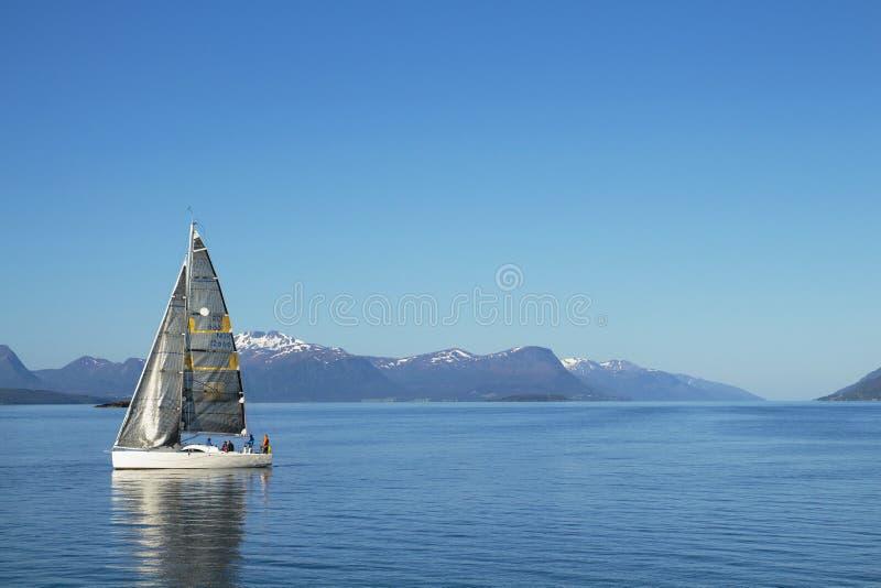 Плавание парусников, голубое облачное небо и белые ветрила Molde Норвегия, Европа стоковое изображение rf