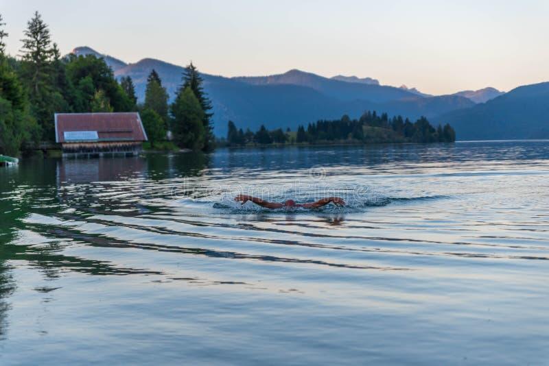 Download Плавать в озере стоковое изображение. изображение насчитывающей goggles - 99717729