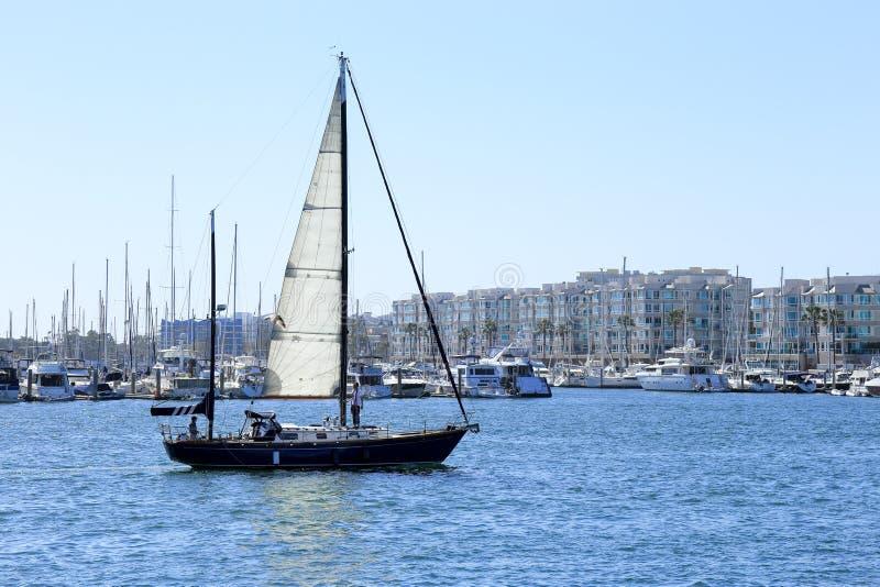 Плавающ на Marina del Rey, Калифорния стоковые фотографии rf