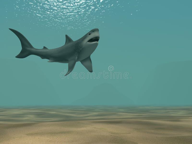 плавая акула океана 3d иллюстрация штока