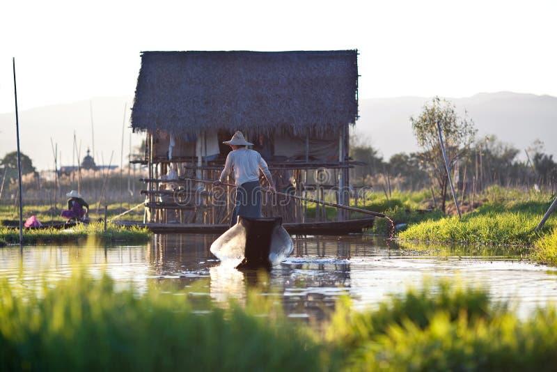 плавая положение Шани myanmar озера inle сада стоковые фото