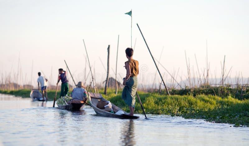 Плавая сад на озере Inle в положении Шани, Мьянме стоковое изображение